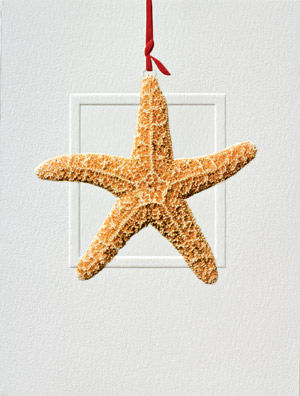 Sea Star Petite Embossed Christmas Cards