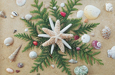 Seaside Stars Embossed Christmas Cards